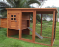 Small-chicken-coop-5